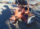 Used Case Plow Stock #908 Price: $1250