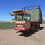 D&D Sales Cortez, CO Used 1982 New Holland 1069 Bale Wagon